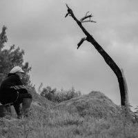 Старик и горе :: Светлана Шмелева
