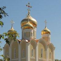 Церковь Спиридона Тримифунтского в Нагатинском Затоне :: Александр Качалин