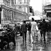 В Париже тоже бывют дожди... :: igor G.