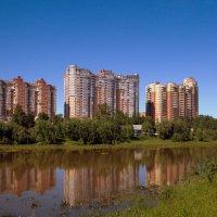 вид из парка :: Олег Петрушов