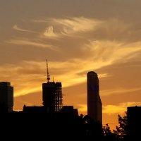 Закат над Москва-Сити :: Марина Грушина