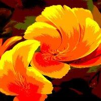 Вальс цветов :: Валерий Талашов