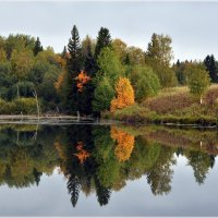 Осенняя симметрия... :: Aquarius - Сергей