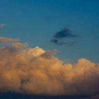 Луна под одеялом :: Светлана Мальцева