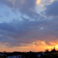 Летний закат. :: Larisa
