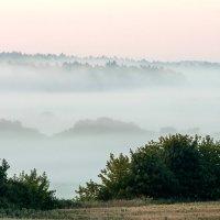 Утро :: Petr Shostak