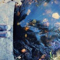 Течет река :: Варвара Фроловская