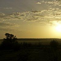 Закат над полем :: Сергей Гибков