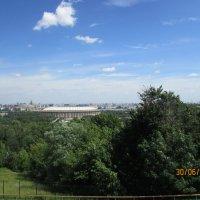 Ленинские горы :: раиса Орловская