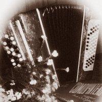 забытый инструмент :: Viktoriya Bilan