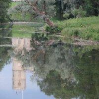 июльский вечер на озере :: sv.kaschuk