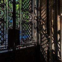 Свет и тень :: Сергей Волков