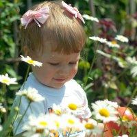 Ромашки для малышки :: Anna D