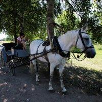 В ожидании жлающих прокатится :: Nikolay Monahov