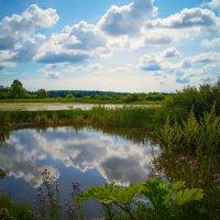 Облака купаются в пруду :: Наталья Лакомова