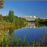 лесное озеро :: Дмитрий Анцыферов