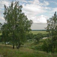 Приокский пейзаж. :: Виктор Евстратов