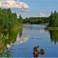 озеро :: Дмитрий Анцыферов