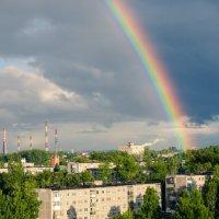После дождя :: Николай Писецкий