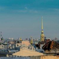 На пороге белой ночи (3) :: Владимир Горубин
