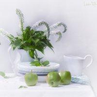 Бело-зелёное :: Светлана Л.
