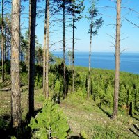 На Байкале :: alemigun