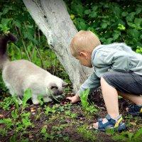 Малыш :: Юлия Харина