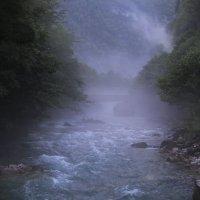 Туман :: Ольга Демьяненко