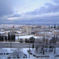 Вид из моего окна :: Zinaida Belaniuk