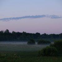 туман :: Лёха Дидус