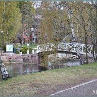 Парк :: Lyubov Zomova