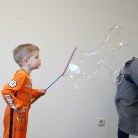 Собака из мыльного пузыря :: Ольга Долбилина