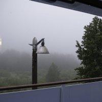 Утро, туман... :: Александр Знаменский