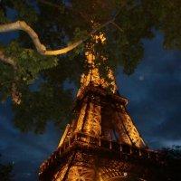 Эйфелевая башня :: Tatiana Tutatchikova