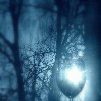 """""""Синеглазое утро сверкнуло лучами...""""   http://www.chitalnya.ru/work/283358/ :: veilins veilins"""