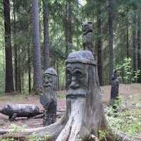 Хозяин леса :: Ирина Фирсова