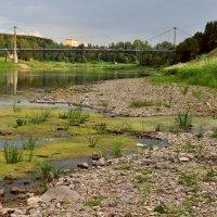 Обмелела Волга... :: Ирина Данилова