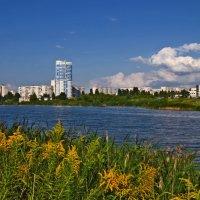 Лето в Харькове :: Татьяна Кретова