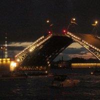 Дворцовый мост :: Самохвалова Зинаида
