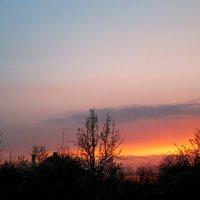 Апрельский закат над садами... :: Тамара (st.tamara)