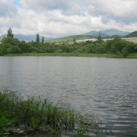 Озеро у автовокзала города Партизанска :: Анатолий Кузьмич Корнилов