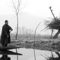 Утро на реке :: Slava Kaplun