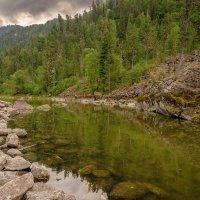 Каменный залив(Телецкое озеро) :: Жанна Мальцева