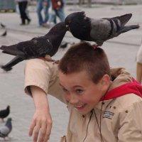Мальчик и голуби :: Дмитрий Лебедихин