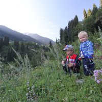 Утро в горах :: Свет Какоткина