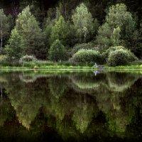 Два мира.. :: Андрей Войцехов