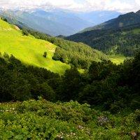 Лето в горах,завораживает... :: Геннадий Ячменев