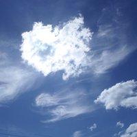 Небесное сердце :: BoxerMak Mak