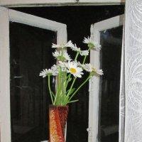 Летний вечер. :: Михаил Попов