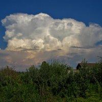 (На даче. Вечернее облако). :: Sergey Serebrykov